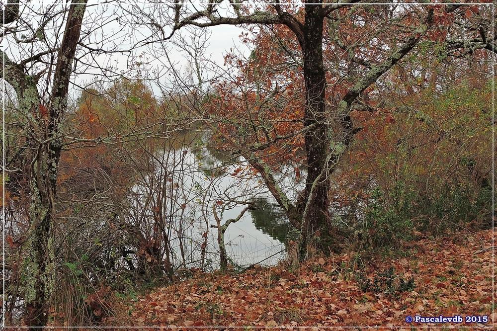 Tour du domaine de Graveyron - Décembre 2015 - 1/5