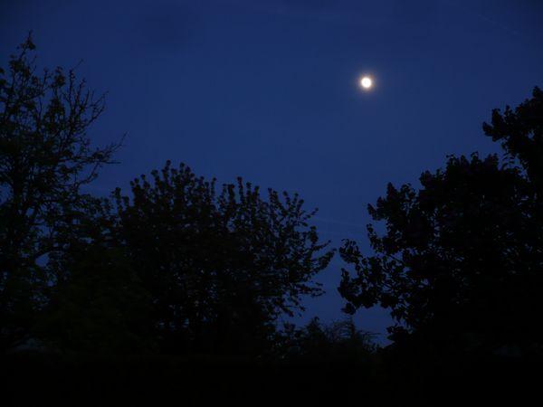 Nuit d'avril 2