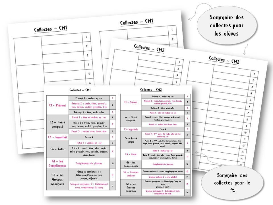 Faire De La Grammaire Au Cm1 Cm2 Methode Picot La Classe De Stefany