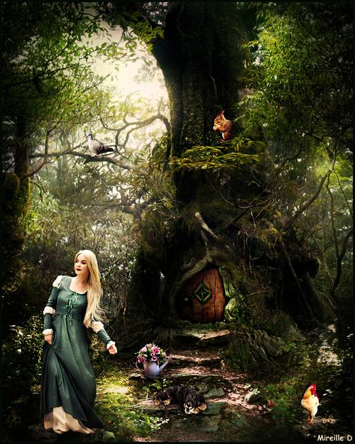 Refuge en Forêt (Photomontage)