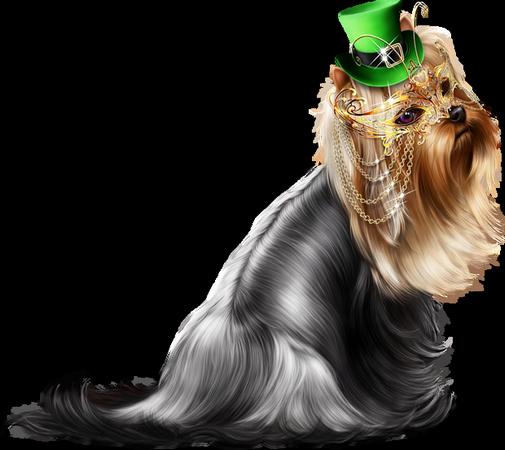 Tubes déco et Animaux St Patrick