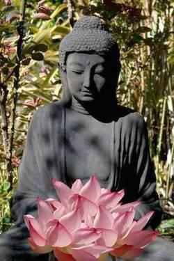 Bouddha au lotus