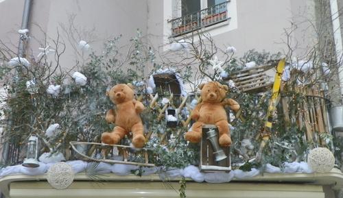 Au pays des ours bruns