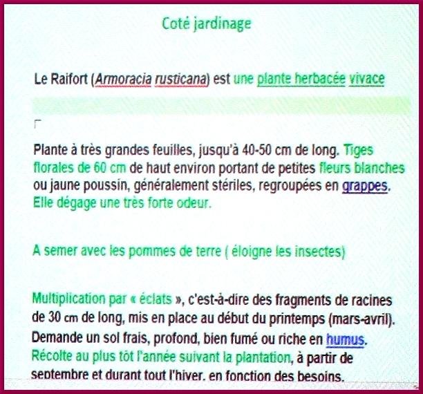 Gilles Seytre a présenté  au club des Anciens de Nod sur Seine, une étude fort intéressante sur les propriétés de plantes que nous pouvons cultiver dans nos jardins