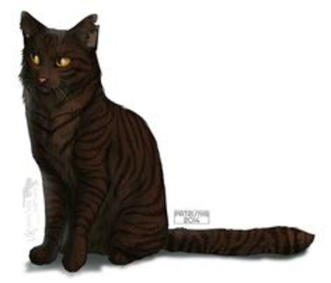 Warriors Cats - Tigerheart by Cat-Patrisiya.deviantart.com on @DeviantArt