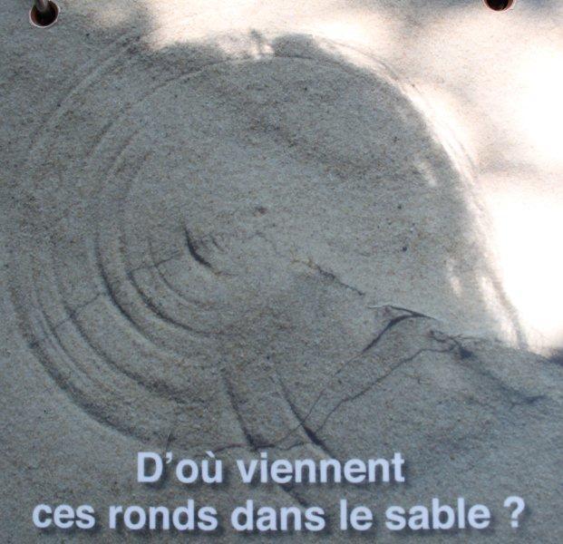Dune du Pyla (24)