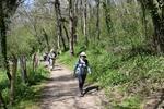 La randonnée du 24 avril à Vieux-la-Romaine