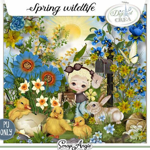 Spring wildlife