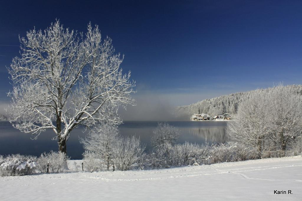Il a neigé sur le lac... Image 1