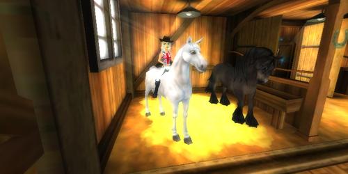 1 nouveau cheval et une photo de Sky Eye