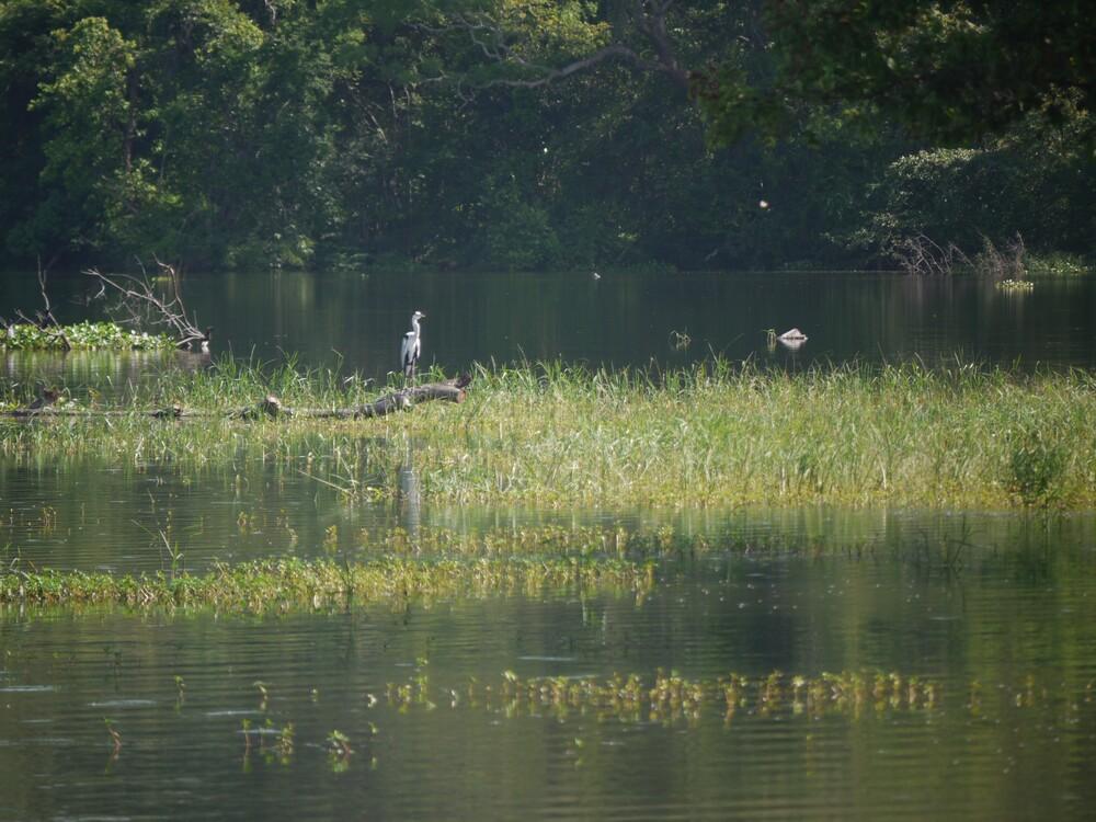 Le Buduruwagala - Sri Lanka
