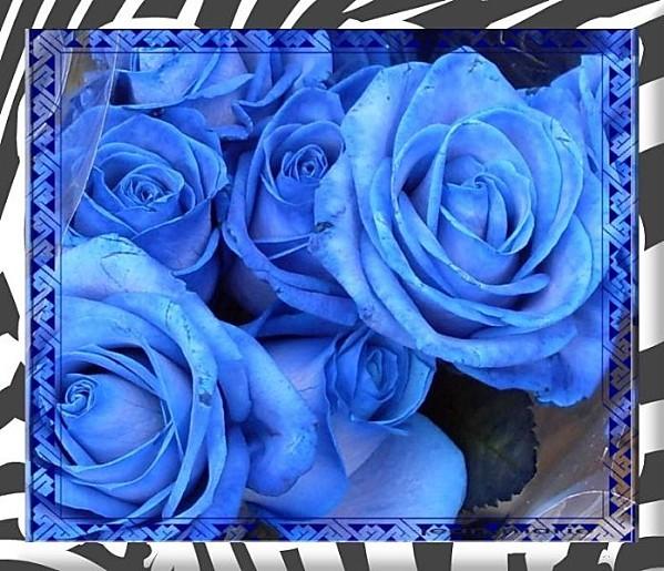 creation rose-bleue.lejardindejeanmarie-3-copie-1