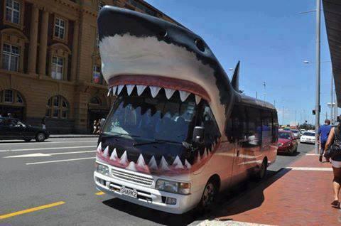 Photos Bus