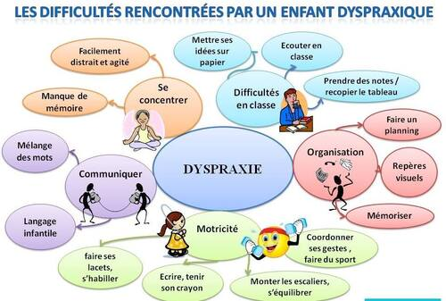 Les difficultés rencontrées par un enfant dyspraxique