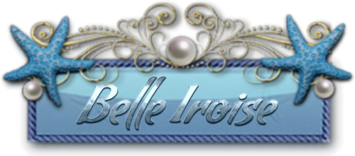 BIENVENUE BELLE IROISE