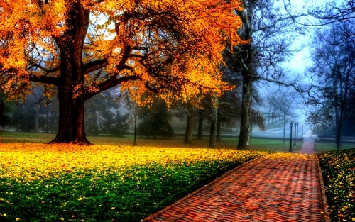 Giovanni Marradi - Autumn Leaves
