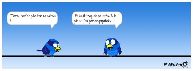 ♥en Hollande♥