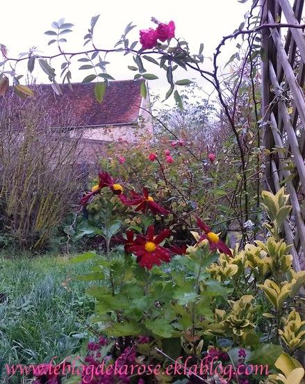 Imaginez votre jardin/Imagine your garden