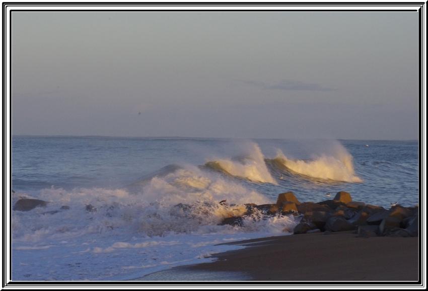 Toujours à St Denis d'Oléron mais sous la tempête 03 février 2014