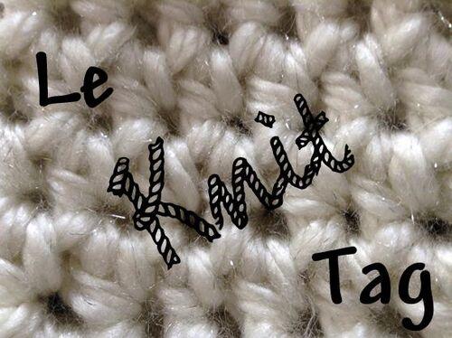 Le Knit Tag d'Aiguilles et Papilles