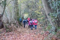 La randonnée du 20 novembre à Dozulé