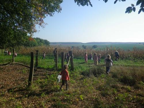 activités et bricolages d'automne