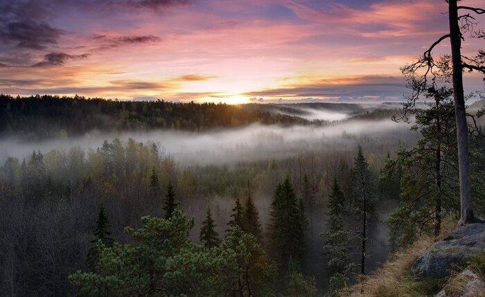 Balade Dans La Région De Kainu En Finlande