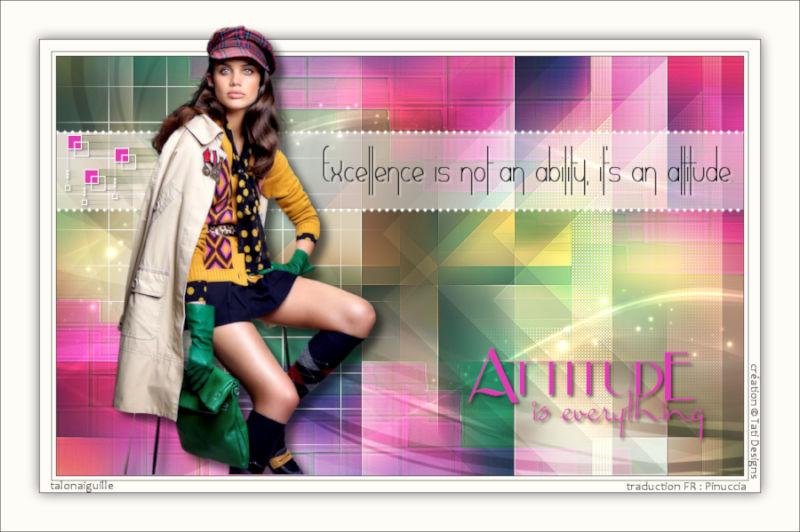 *** Attitude  ***