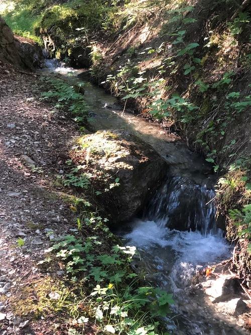 Canal de la Pisse (Saint Vincent les Forts)