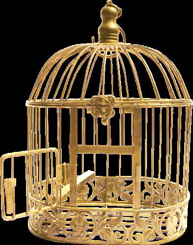 Cages à Oiseau Série 1