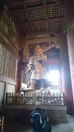 Jour 9 : Excursion à Nara