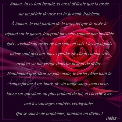 carte poeme amour008