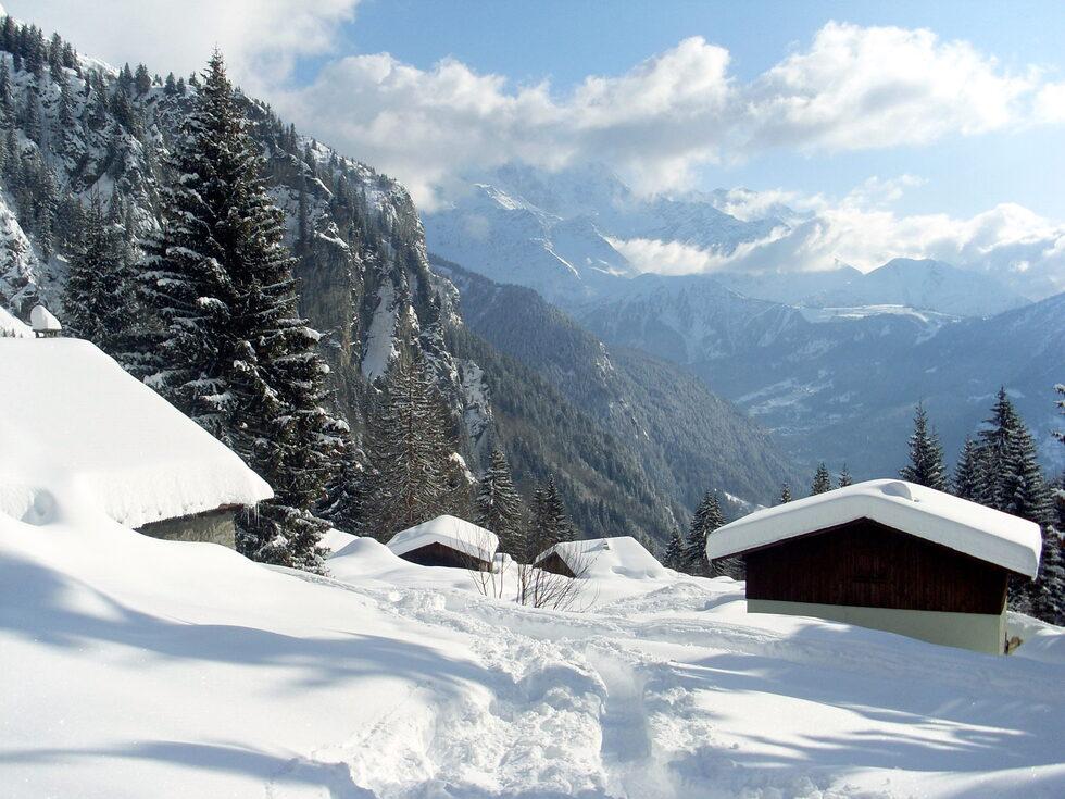 Mon *Paradis blanc* N°2  (Photos Janvier 2010 )