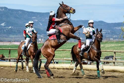 Horse ball : les 8 équipes qualifiées