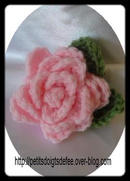 kdo-rose2.JPG