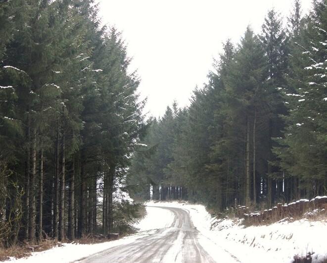 Monts d'Arrée (4)