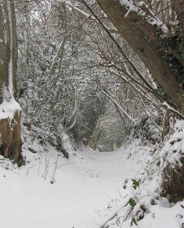 Chemin creux sous la neige à Bellou le Trichard