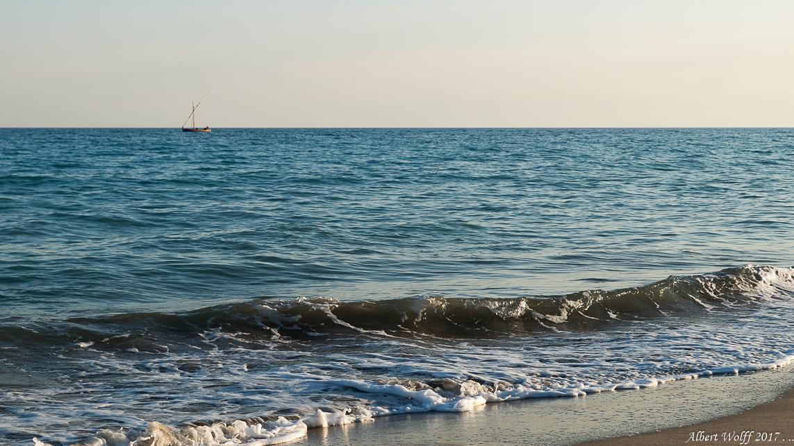 Occitanie  2017 - Une  histoire de vagues