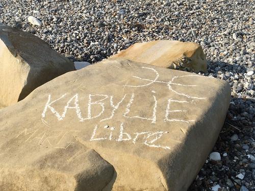 Le piège tendu par les arabes, se referme sur les kabyles.