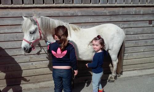 1e cours d'équitation