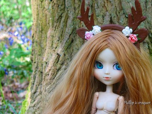 Alice au bois des merveilles