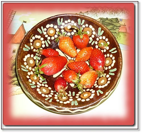 premieres-fraises-2010.JPG