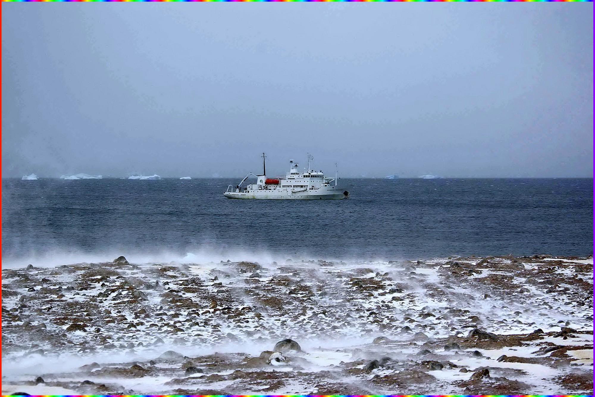Mouillage devant Paulet Island