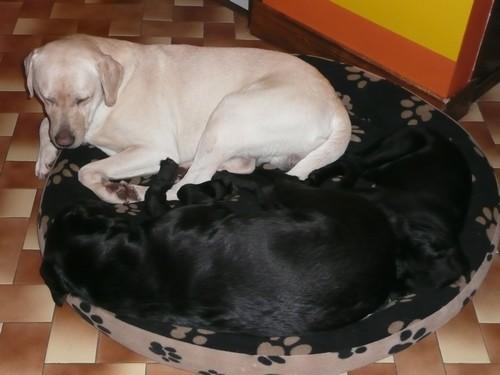 dormir-ensemble.jpg