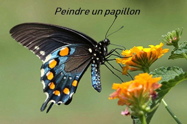 Dessin et peinture - vidéo 2919 : A la découverte des papillons en peinture - toutes les techniques.