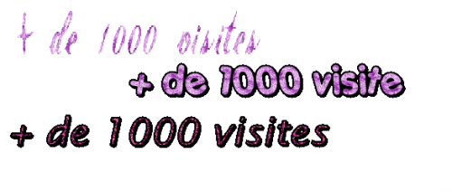 + 1000 visites