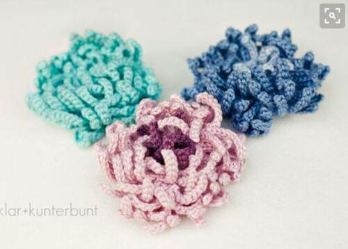 La fleur de chrysanthème