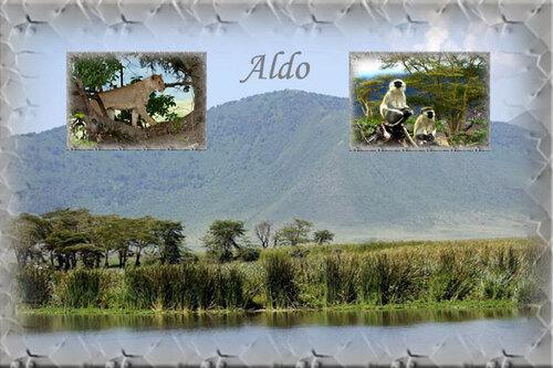 PPS Ngorongoro