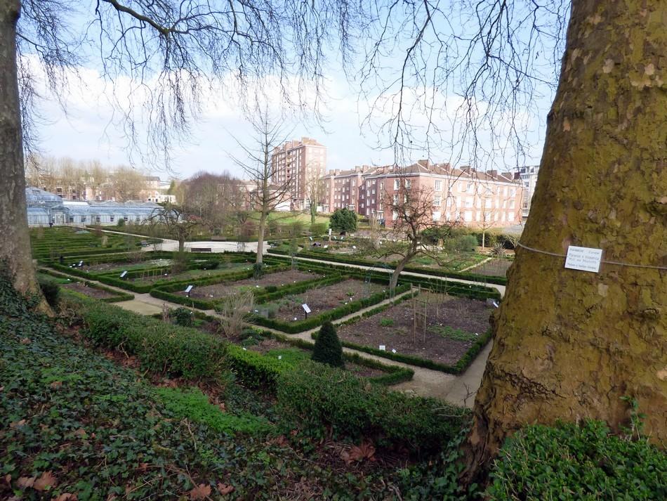 Et si on allait au Jardin des Plantes ?
