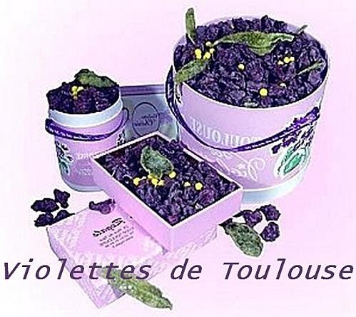 Violettes-de-toulouse